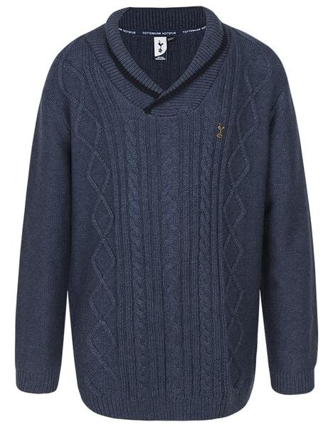 Spurs Youth Boys Shawl Collar Jumper
