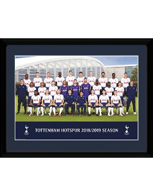 Spurs 2018/19 Team Framed Picture