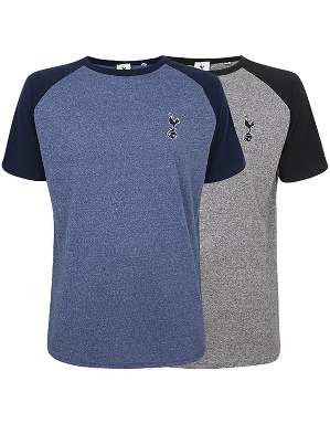 Spurs Mens Colour Block T-shirt