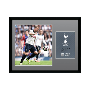 2016/2017 Harry Kane Signed Picture