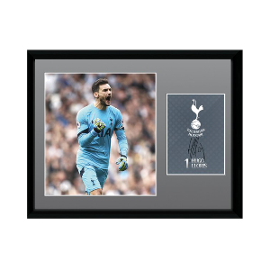 2016/2017 Hugo Lloris Signed Picture